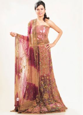 Brown Net Lehenga Choli