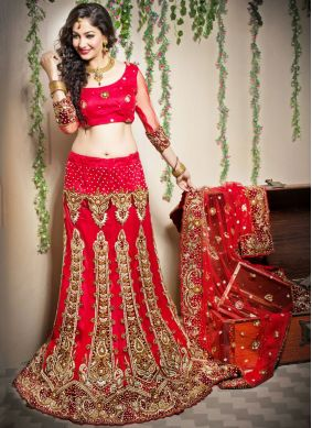 Extraordinary Embroidered Net Designer Lehenga Choli