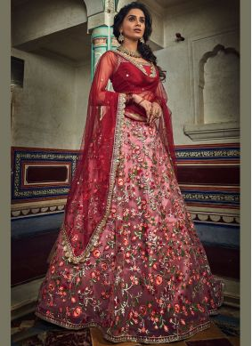 Modern Rani Embroidered Net Designer Lehenga Choli