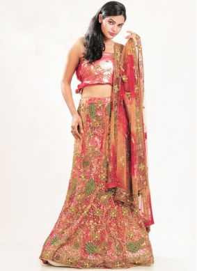 Vivacious Embroidered Multi Colour Lehenga Choli